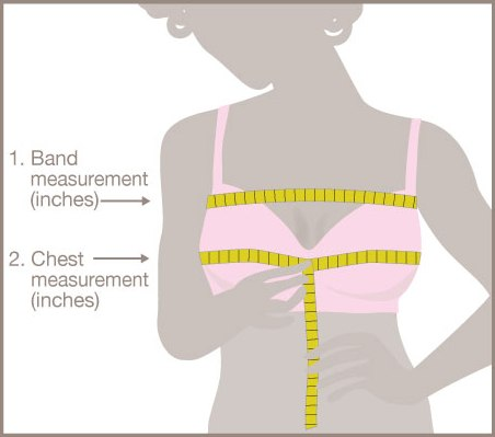 Измерение над грудью 2